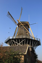Molen De Ster (MoshersMoll) Tags: holland netherlands windmill dutch architecture rotterdam europe traditional nederland thenetherlands nl touristattraction molen kralingen dester kralingsebos kralingseplas