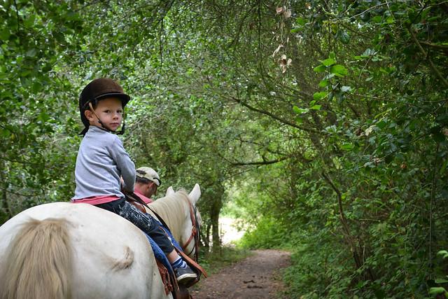 summer 2011 :: pt. reyes horseback riding