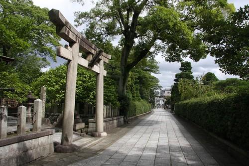 日本の美 / The Japanese beauty