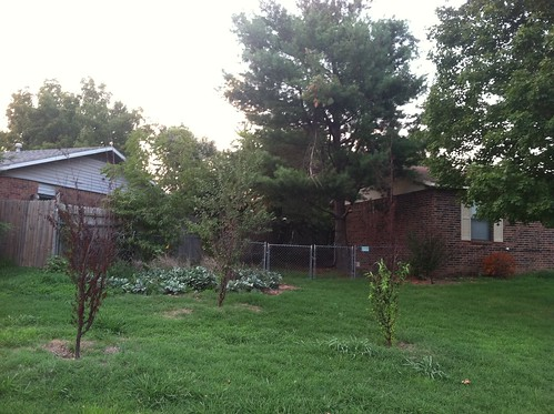 Front Yard from Left Side