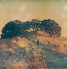 (theonlymagicleftisart) Tags: nature polaroid sx70 mask forrest magic fantasy journey cloak wisdom mythology wanderer timezero vagabond joesphcampbell tzartistic impossibleproject aherosjourney