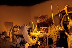 Wax Treasures of Tutankhamun (jennofarc) Tags: sanfrancisco california usa celebrity ancient unitedstates egypt mummy waxmuseum tutankhamun treature