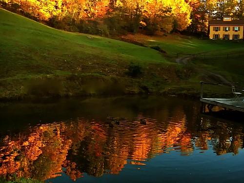 Little Horse Creek Autumn