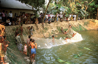 Aquaculture in Bangladesh. Photo by Mark Prein, 2006.