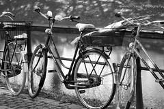Hercules (Miriam Daepp) Tags: barcelona city urban london reflections germany switzerland losangeles citylife streetphotography istanbul lausanne venicebeach bern duesseldorf cityscenes gehryhouse gehryarchitecht