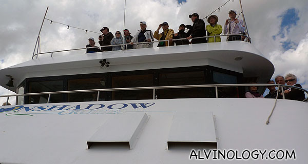 Fellow passengers watching dolphins from the upper deck