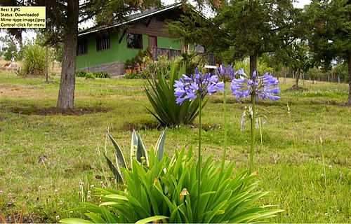 6268898333 7757c8cb8e Ecuador Real Estate MLS   October 2011