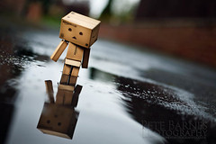 Danbo Photography (Pete Barnes Photography) Tags: cute art japan fun photography cool amazon funny photographer box funky humour cardboard commercial trendy communications danbo danboard