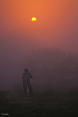 De entre la niebla aparecio (Para mi amigo Chus Ochoa) (Urugallu) Tags: sol canon flickr asturias amanecer niebla siluetas amistad compaia fotografiando asturies wow1 50d piloa cayn principadod