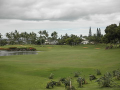 WAIKELE COUNTRY CLUB 068