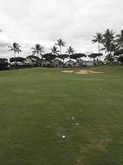 WAIKELE COUNTRY CLUB 187