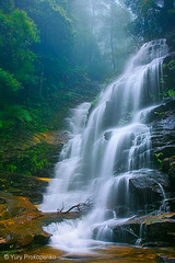 Waterfall :: Sylvia Falls (-yury-) Tags: nature landscape waterfall australia bluemountains falls nsw wentworthfalls valleyofthewaters sylviafalls