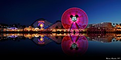 Reflections of Paradise...[Explore] (Ring of Fire Hot Sauce 1) Tags: longexposure reflection water night lights disneyland wideangle mickeymouse rollercoaster bluehour disneycaliforniaadventure paradisepier worldofcolor mickeysfunwheel canont1i sigma816