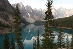 IMG_8293 Moraine Lake (Coffee & Tea) Tags: canada rockymountain morainelake