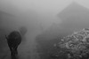 . (ngravity) Tags: street travel bw fog canon blackwhite buffalo village candid streetphotography vietnam farmer nocrop bison sapa indochina travelphotography eos50d thedefiningtouch deftouch makrygiannakis
