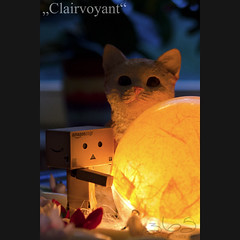 Clairvoyant (Oliver Totzke) Tags: macro ex toy dc nikon sigma days 365 f28 1850 danbo hsm revoltech danboard d7000