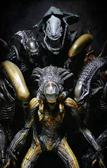 Aliens!!! Take 2 - Sweet Xenomorph Family (Jova Cheung) Tags: toys actionfigure aliens avp chet mcfarlane neca xenomorph alienresurrection customfigure yautja alienqueen predalien alienwarrior avpr warrioralien moviemaniacs6 alienqueendeluxeboxedset praetorianalien