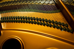 Piano Innards (Tmarkatos) Tags: music black metal closeup golden shiny cords piano strings musicalinstrument brass