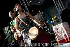 The Ragbirds (FIT FOR THE PIT) Tags: show camping music ny festival hippies drums lights concert bass guitar live gig hippy jamming moe mohawk jam the moedown ragbirds newyork lowlight moedown jambands jamband