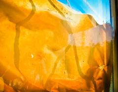 Foto_21.9.11-9 (Churechawa) Tags: original light shadow stilllife abstract art texture strange modern composition project creativity photography photo artist moody view prague artistic contemporary crossprocess fine creative picture poetic mind reality fujifilm lovely elegant delicate author graceful epic mystic stylish pictorial imaginative mastery lyric digitalfilm harmonious pleasing exr inventiveness f70exr eligiac