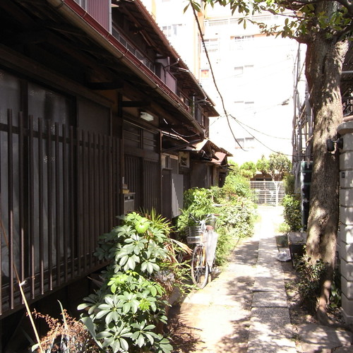 Megurogawa_8