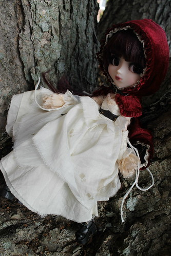 Jun Planning Pullip Doll Bloody Red Riding Hood Groove Japanese Creators Label