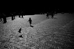 Siena (merelyok) Tags: leica bw italy streetphotography rangefinder siena m9