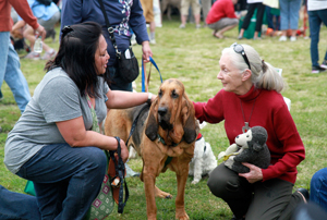 Dr. Jane Goodall with some furry friends at Strut Your Mutt in Los Angeles 2011