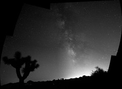 Joshua Tree National Park Milky Way (defiantGTI) Tags: park tree way joshua national milky