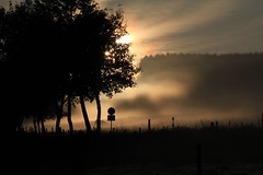September Days (rolfspicture) Tags: autumn trees sky mist color nature fog landscape morninglight herbst sauerland bruchhausen