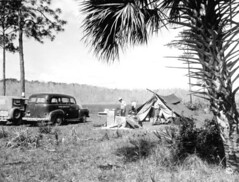 Campers in Corkscrew Swamp: Collier County, Florida (State Library and Archives of Florida) Tags: camping cars florida tent recreation campers corkscrewswamp colliercounty tincantourists statelibraryandarchivesofflorida