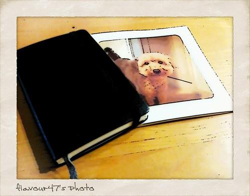 grambook