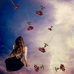 Spring Awakening (AftonDufoe) Tags: pink flowers blue roses sky clouds spring purple surreal falling fantasy dreamy portfolio texturesbylesbrumes aftondufoe