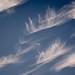 #36 Clouds
