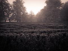 Fog at the broken labyrinth (gothicburg) Tags: