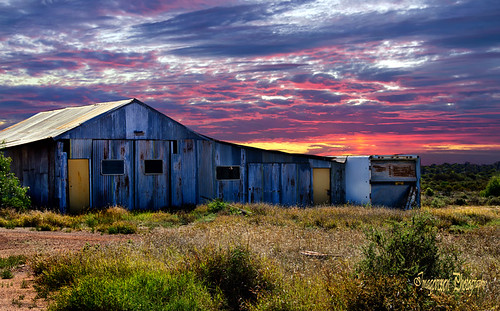 Old Barn ..Menzies WA