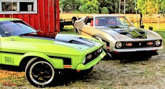Corralled Part 2 (AceOBase....) Tags: summer usa sunlight ford grass car canon 1971 icons farm limegreen ace wheels 71 farmland delight rides mustang musclecar goodtimes silvercar fastback showcar mach1 coolcars fordracing 71mustang worldcars 1971mustang whatagreatevening certifiedcarcrazy idreamofcarsmotorsandhorsepower mymach1 youjustdontseethiseveryday ilovemy50d sbimageworks mustanglust 2sweetrides phrwinners