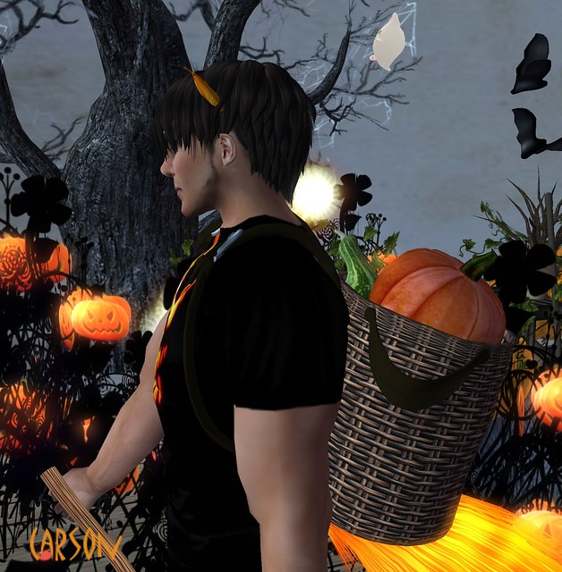 Spiders Design -  Pumpkin Basket