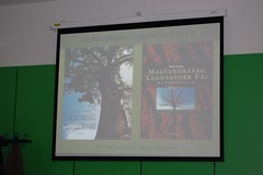 nice books on Hungarian Trees (thetreehunter) Tags: wood uk trees england tree forest woodland arbol maple oak bomen ancient woodlands shropshire boom arbor chase gb ash chestnut yew lime elm albero arbre baum beech pollard ath atf arborist coppice hunt baume copac ellesmere drzewo copaci drzewa chene silver tree ancient commission birch pollarding coppicing arberi rob frene trust sweet hunter forum treehunter thetreehunter woodland mcbride forestry chestnutrowan