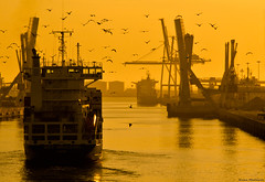 London (Nuno.Medeiros) Tags: ocean bridge sunset portugal port boat mar nikon barco ship ponte porto navio matosinhos lea porsol leixoes flickraward ilustrarportugal flickrestrellas d7000 flickraward5 ringexcellence dblringexcellence tplringexcellence eltringexcellence