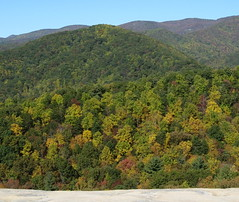 Fall colors at Wolf Rock