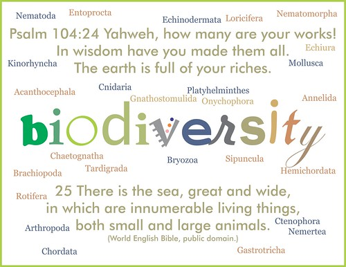 biodiversity word poster 2 with phyla