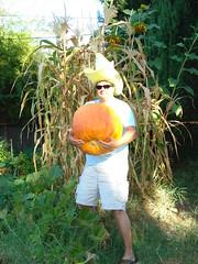 Big Yellow Hat and Pumpkin