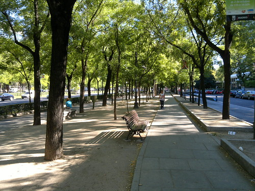Walking through Paseo de la Castellana