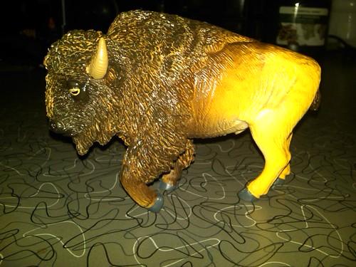 Rex Bison