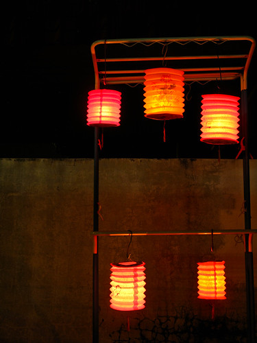 IMG_0373 Paper Lanterns ,Mid Autumn Festival 2011,tanglong , 中秋节,纸灯笼