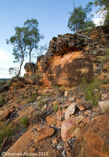 Sandstone Outcrop