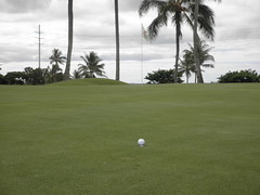 WAIKELE COUNTRY CLUB 091