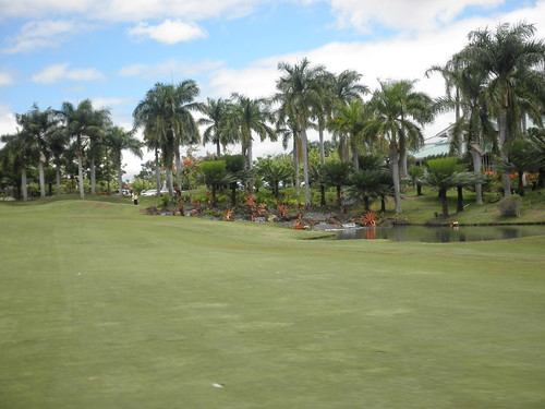 WAIKELE COUNTRY CLUB 260