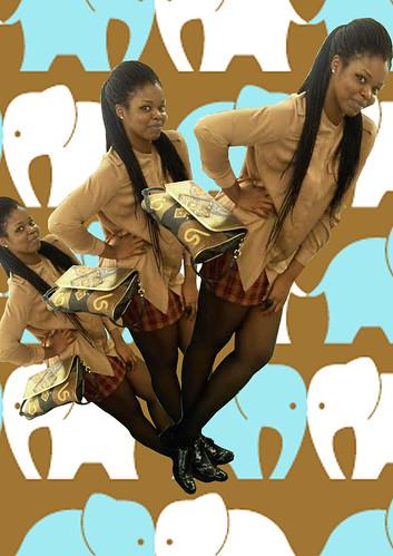 Elephnts